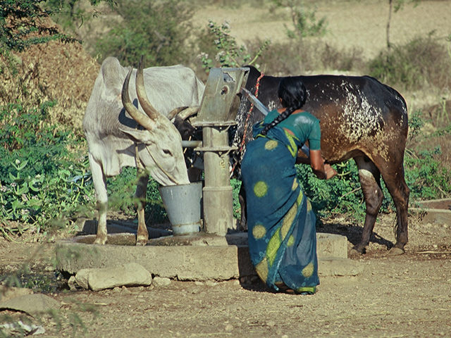 WHAT PEOPLE NEED: water for drinking, cooking, washing, sanitation, crops, livestock, fisheries, gardens, small-scale enterprise